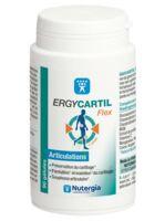 Ergycartyl Flex Gélules Pot/90 à ROCHEMAURE