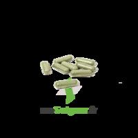 Draineur - 42 Gélules