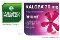 Kaloba 20 Mg Comprimé Pelliculé Plq/21 à ROCHEMAURE
