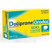 Dolipraneorodoz 500 Mg, Comprimé Orodispersible à ROCHEMAURE
