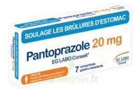 Pantoprazole Eg Labo Conseil 20 Mg Cpr Gastro-rés Plq/7 à ROCHEMAURE