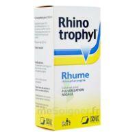 Rhinotrophyl Solution Pour Pulvérisation Nasale 1fl/12ml à ROCHEMAURE