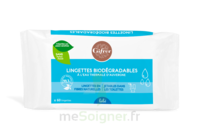 Gifrer Lingette Biodégradable Eau Thermale Bébé Paquet/60 à ROCHEMAURE