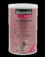 Biocanina Lait Poudre Maternisé B/400g à ROCHEMAURE