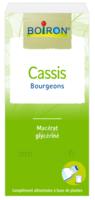 Boiron Cassis Bourgeons Extrait Glycériné Fl/60ml