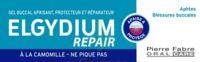 Elgydium Repair Pansoral Repair 15ml à ROCHEMAURE
