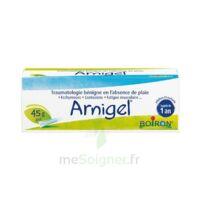 Boiron Arnigel Gel T(alumino-plastique)/45g à ROCHEMAURE