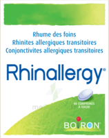 Boiron Rhinallergy Comprimés B/40 à ROCHEMAURE